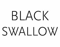 $10 off you order @ Black Swallow Boutique